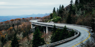 Family Road Trip - Winding Road